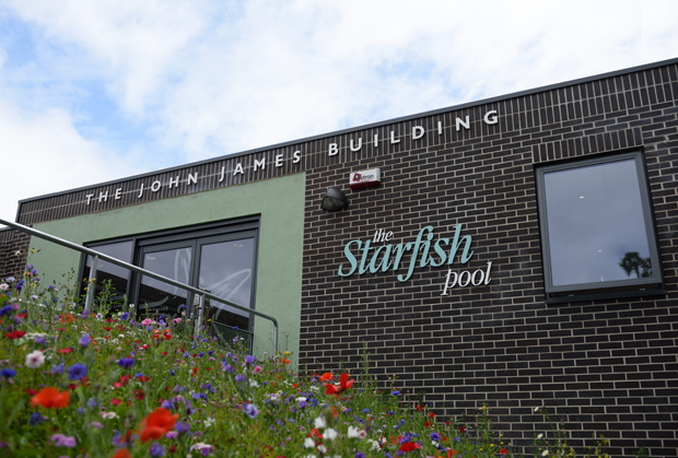 The Starfish Pool, John James Building, Claremont School, Bristol